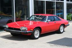 91_Jaguar-01